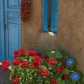 Flowers At Ranchos De Taos by Greg Kluempers