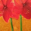Flowers by Brindha Naveen