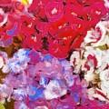 Flowers  by Dan Sproul
