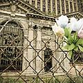 Flowers For Detroit by Priya Ghose