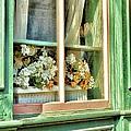 Flowers In The Window by Jean Goodwin Brooks