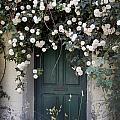 Flowers On The Door by Gina Dsgn