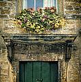 Flowers Over Doorway by Jill Battaglia