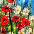 Flowers - Poppy's Flower by Daliana Pacuraru