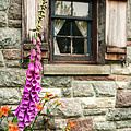 Flowers Stone And Old Country Window by Gary Heller