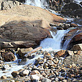 Flowing Downstream by Shane Bechler