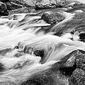 Flowing St Vrain Creek Black And White by James BO Insogna