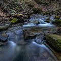 Flowing Waters by David Dufresne