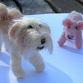 Fluffums - Lhasa Apso Tibetan Terrier And Piglet by Maria Joy