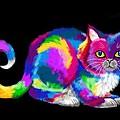 Fluffy Rainbow Cat 2 by Nick Gustafson