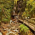 Flume Gorge At Franconia Notch by Adam Jewell