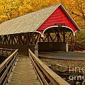 Flume Gorge Covered Bridge by Adam Jewell