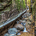 Flume Gorge In Autumn by Pierre Leclerc Photography