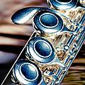 Flute by Joe Mamer