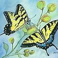Flutterbys by Karen Harrod