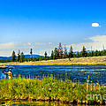 Fly Fishing In Yellowstone by Robert Bales