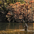 Fly Fishing  by Tamyra Ayles