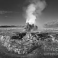Fly Geyser by Don Hall