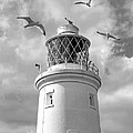 Fly Past - Seagulls Round Southwold Lighthouse In Black And White by Gill Billington