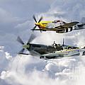 Flying Brothers by J Biggadike