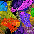 Flying Colors by Gwyn Newcombe