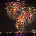Flying Feathers Of Boston Fireworks by Sylvia J Zarco