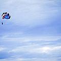 Flying High by Ronda Broatch