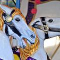 Flying Horses On The Carousel by Scott Lenhart