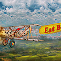 Flying Pigs - Plane - Eat Beef by Mike Savad