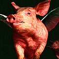 Flying Pigs V3 by Wingsdomain Art and Photography