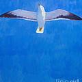 Flying Seagull by Lutz Baar