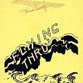 Flying Thru by Mel Thompson