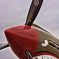Flying Tiger P-40 by Tommy Anderson