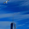 Flyover One World Trade Center by Dan Sproul