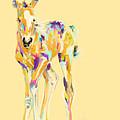 Foal Jip by Go Van Kampen
