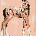 Foal Peach by Go Van Kampen