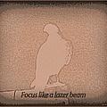 Focus Like A Lazer Beam by Bobbee Rickard
