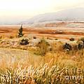 Fog Across The Valley by Robert Kleppin