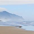 Fog At The Beach by Athena Mckinzie