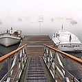 Fog Beyond The Ramp by Janice Drew