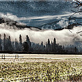 Fog Beyond The Tilled Field  by Mick Anderson
