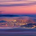 Fog City - San Francisco by David Yu
