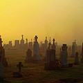 Looks Like Halloween Morning Scene by Gothicrow Images