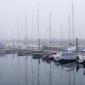 Fog In Marina I by Elena Perelman