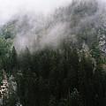 fog by Ira Komornik