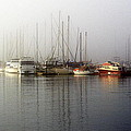 Fog Light In The Harbor by AJ  Schibig
