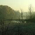 Fog On The Pond by Dennis Pintoski