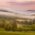 Fog by Ovidiu Caragea