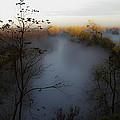 Fog Photo by Brian Williamson