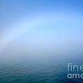 Fog Rainbow by Jacqueline Athmann